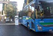 Biglietti Autobus spettacoli Teneramente